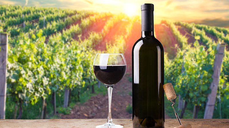 Alternative European Wine Destinations
